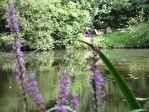 Région Mellionnec - Longère 2 chambres avec bois et petit lac sur 9,6 hectares de terrain