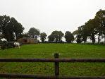 Région Plouguernével - Corps de ferme avec dépendances et écuries sur parcelle de 2,2 hectares