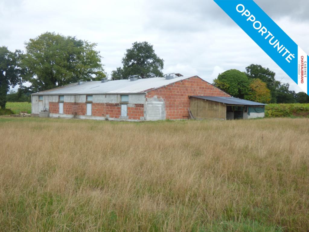 Entrepôt agricole à Mézieres Sur Couesnon, 4 pièces 420 m2