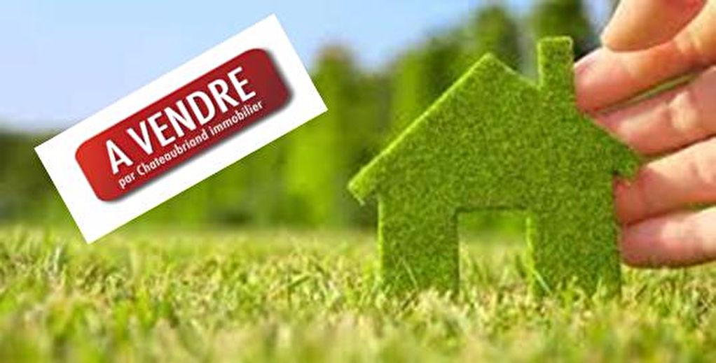Terrain à vendre  Saint Broladre  826 m2