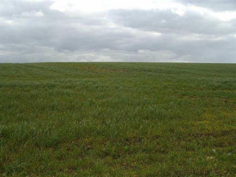 Terrain à batir viabilisé Dol De Bretagne 735 m2