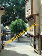 TEXT_PHOTO 0 - Achat Appartement Morlaix 3 pièces 52 m2