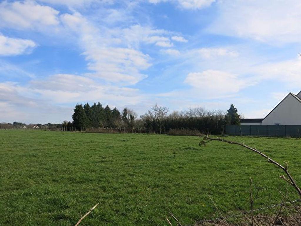 Terrain constructible à vendre 56130 FEREL au calme de la campagne