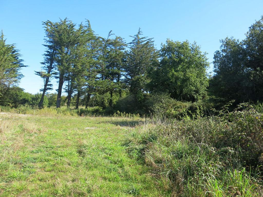Terrain constructible avec partie agricole A VENDRE 56760 Penestin proche du port de Tréhiguier