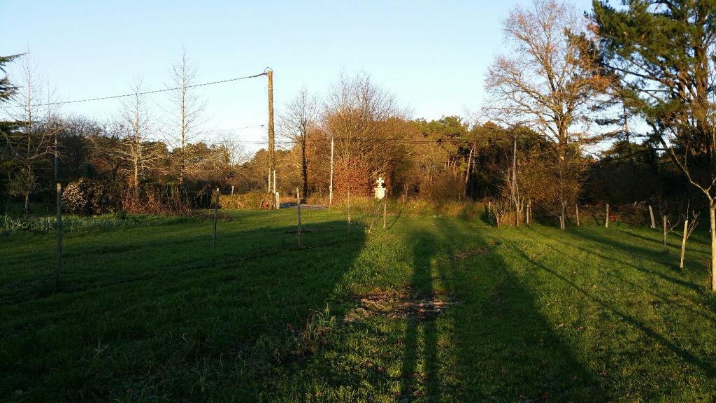 Terrain à bâtir à FEREL, 5 minutes de l'axe NANTES VANNES