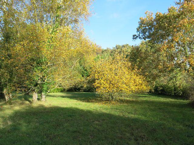 Terrain agricole de 2330 m² A VENDRE sur la commune d' Asserac, proche Penestin, pour stationnement camping-car ou jardin d'agrément