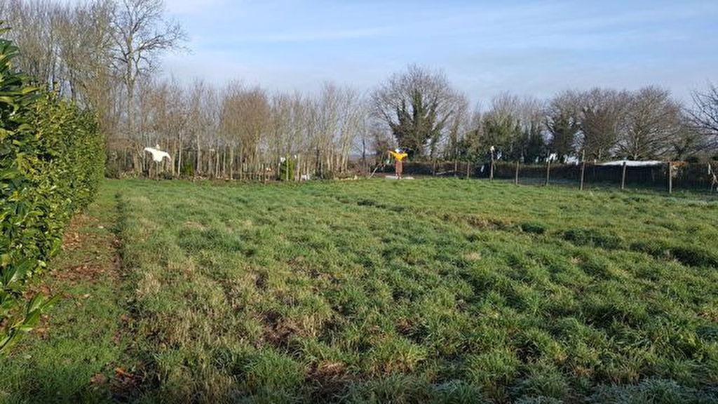 Terrain à bâtir  sur les bords de Vilaine, au calme, 56130 FEREL MORBIHAN SUD