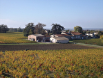 GIRONDE : Beau vignoble en AOC Côtes de Bourg.