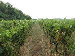 Gironde- Vignoble de 40 ha , outil de travail performant