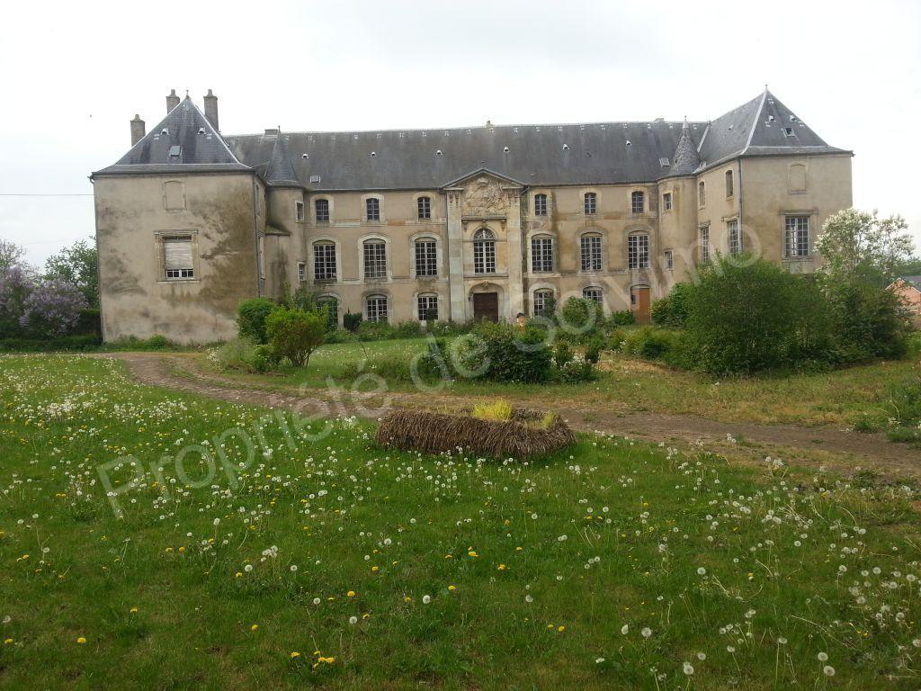 chateau a restaurer a vendre ile de france