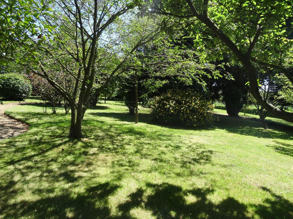 terrain 33451460 photo 2