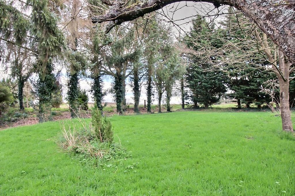 EXCLUSIVITE !  Ancien manoir et grand terrain à Vendre à Evran seulement à quelques minutes de Dinan photo 2