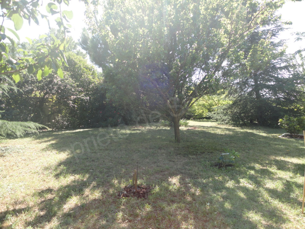 EXCLUSIVITE - TERRAIN 500 M² AU CALME photo 2