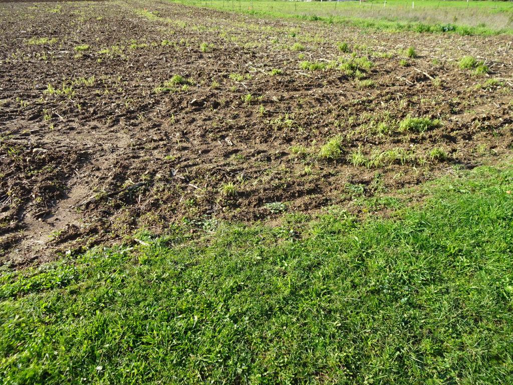 terrain 33736023 photo 2