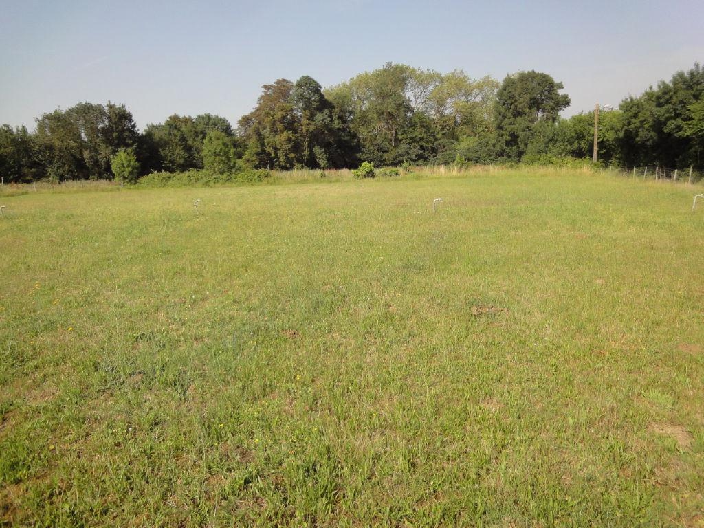 terrain 33749333 photo 2