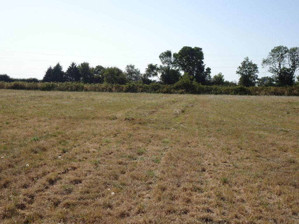 terrain 34640741 photo 2