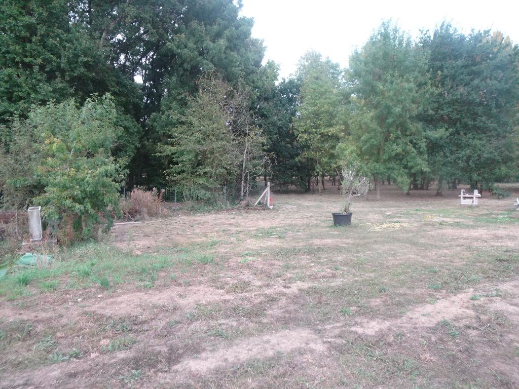 terrain 35367575 photo 2