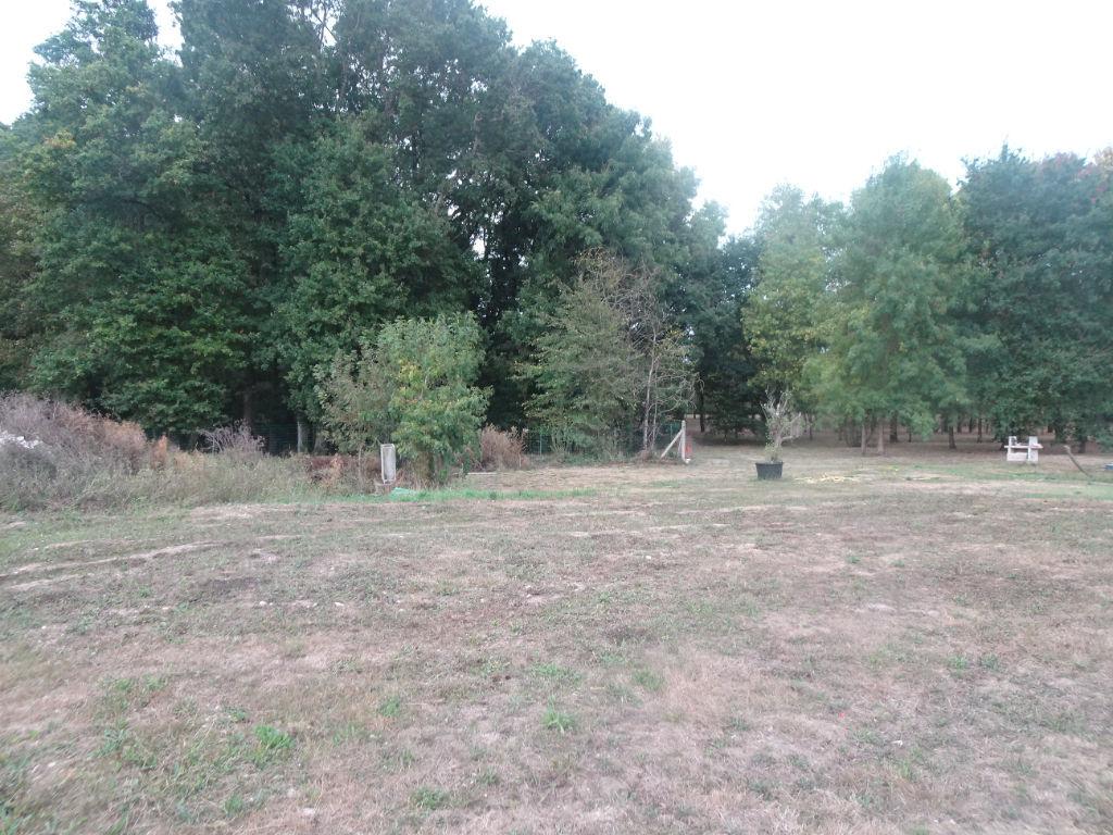 terrain 35367616 photo 2