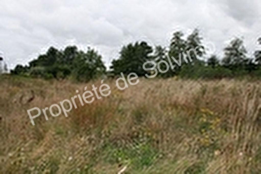 terrain 33430316 photo 2
