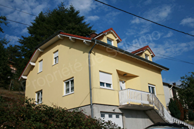 Exclusivite immobiliere 57850 DABO