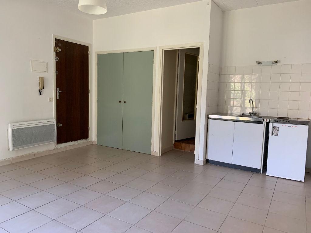 Toulouse Rangueil 31400- appartement T1 - 27m² - Proche métro et fac - terrasse photo 2