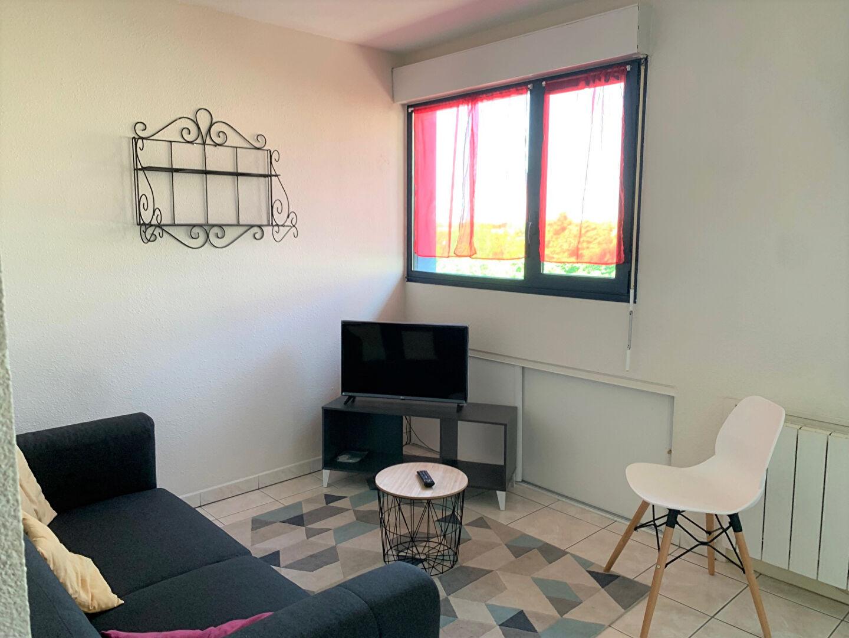 Toulouse les arénes 31100 Appartement  T2 46 m2 parking et terrasse photo 1