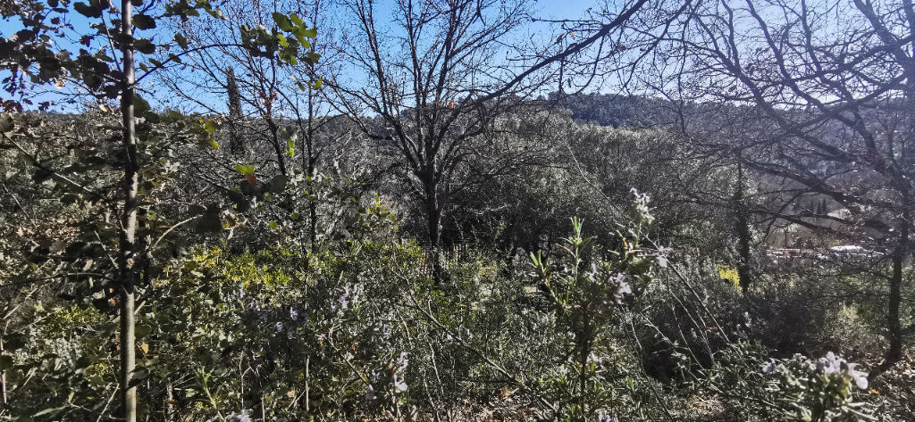 terrain 34362125 photo 2